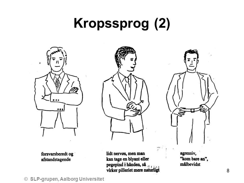 © SLP-grupen, Aalborg Universitet