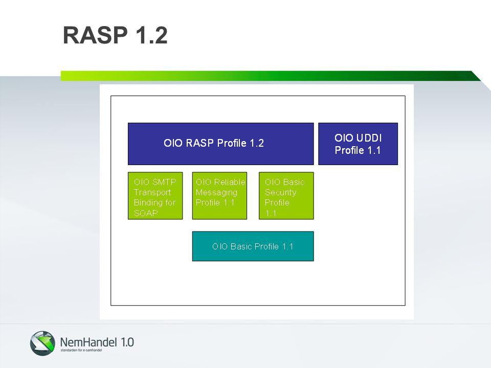 RASP 1.2