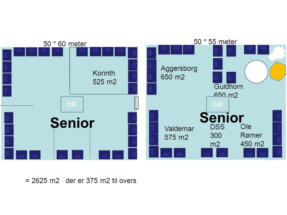 Senior Senior Senior 50 * 55 meter 50 * 60 meter Aggersborg 650 m2