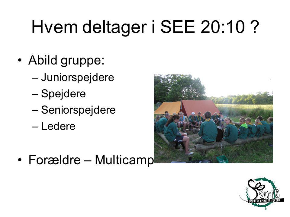 Hvem deltager i SEE 20:10 Abild gruppe: Forældre – Multicamp