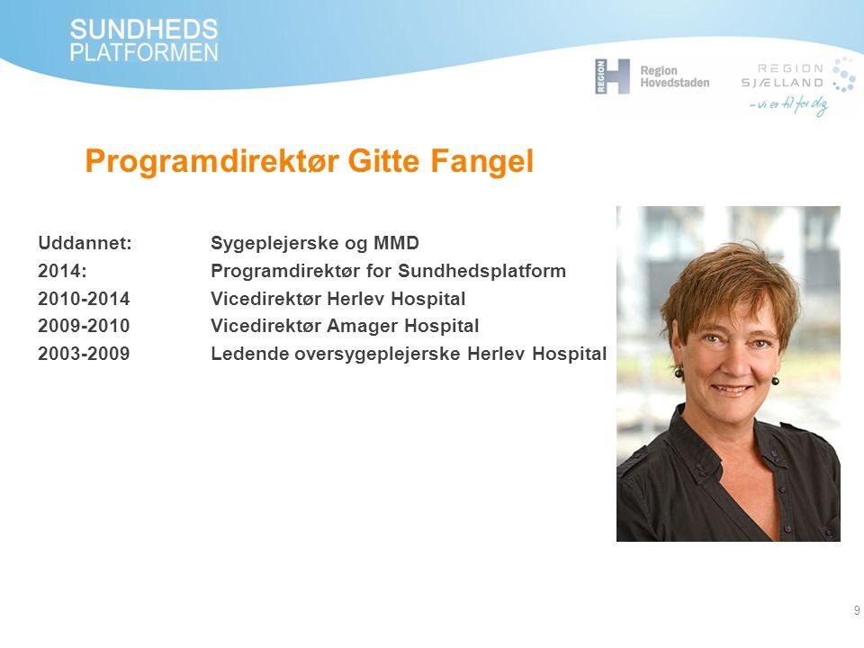 Programdirektør Gitte Fangel