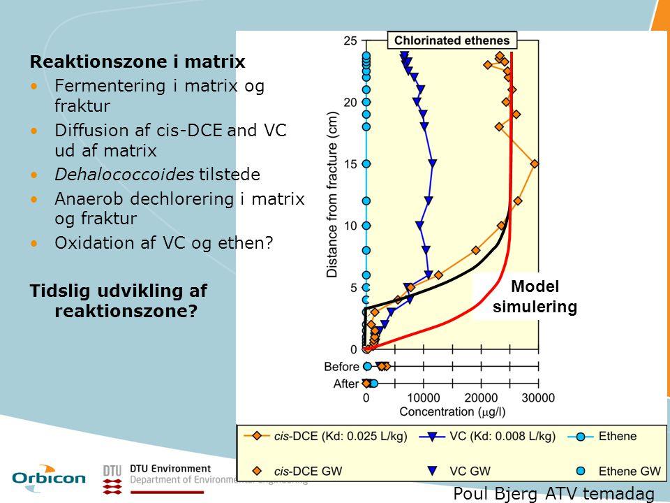 Reaktionszone i matrix Fermentering i matrix og fraktur