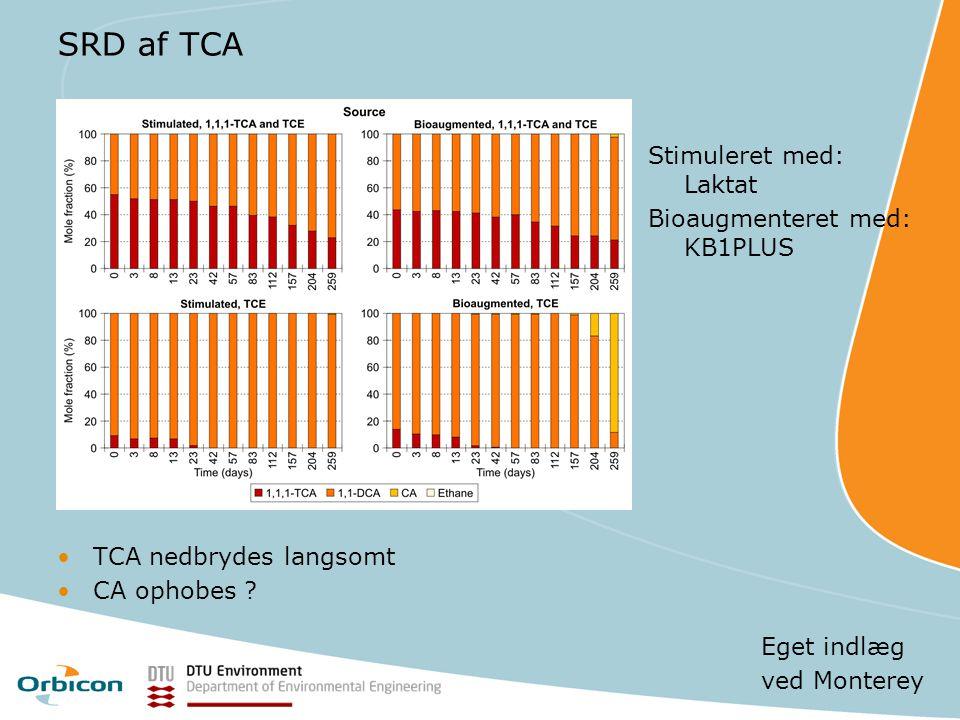 SRD af TCA Stimuleret med: Laktat Bioaugmenteret med: KB1PLUS