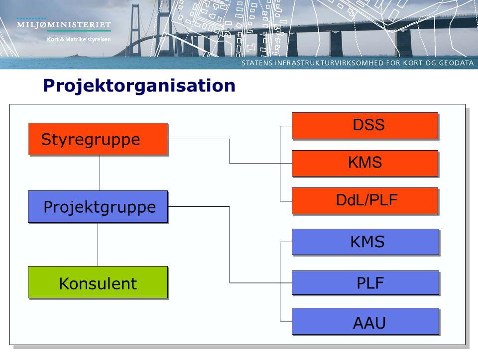 Projektorganisation DSS Styregruppe KMS DdL/PLF Projektgruppe KMS