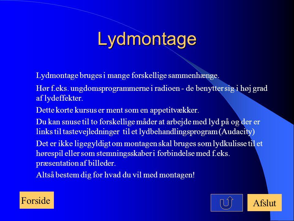 Lydmontage Lydmontage bruges i mange forskellige sammenhænge. Forside