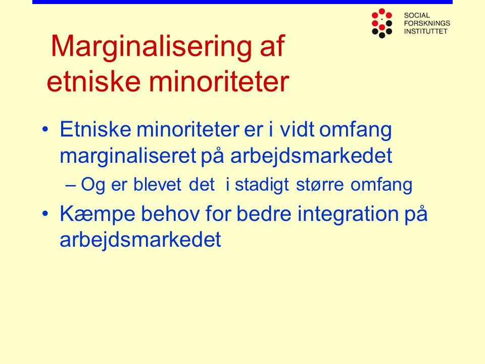 Marginalisering af etniske minoriteter