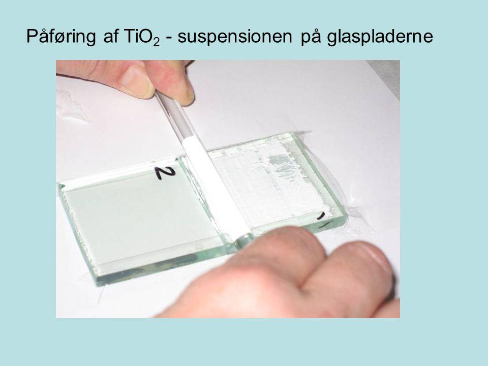 Påføring af TiO2 - suspensionen på glaspladerne