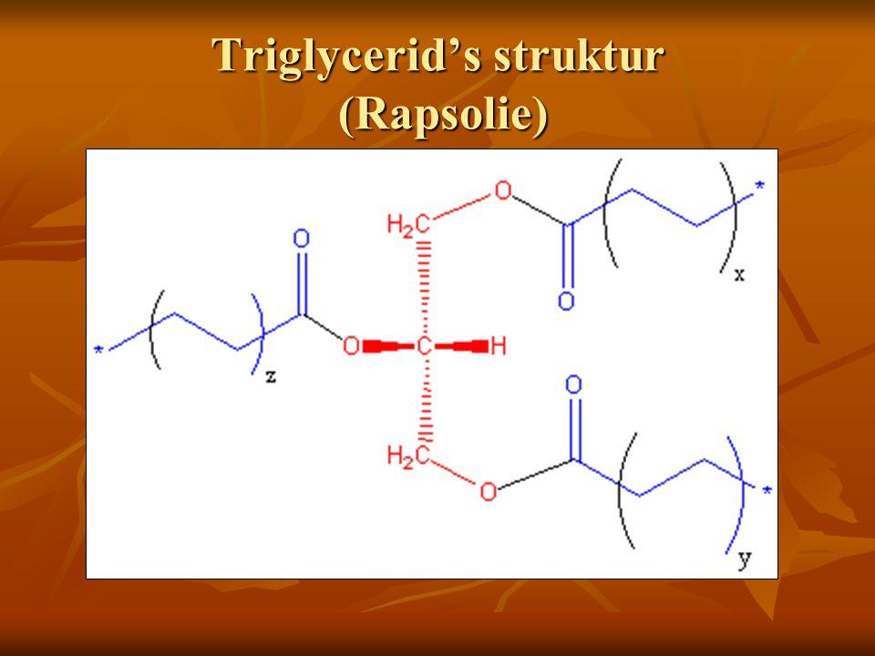 Triglycerid's struktur (Rapsolie)