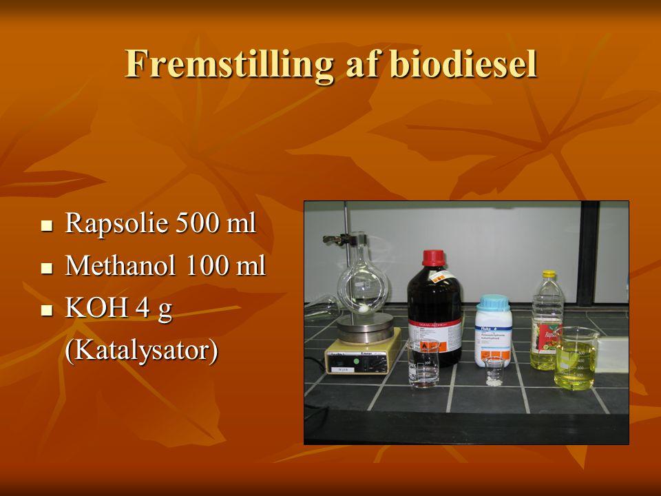 Fremstilling af biodiesel