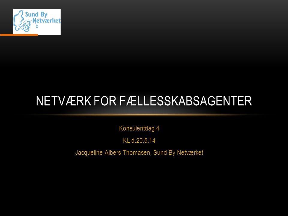 Netværk for fællesskabsagenter