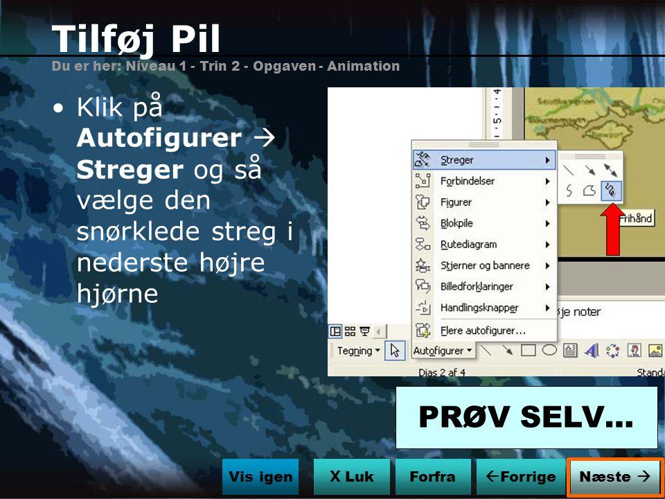 Tilføj Pil Du er her: Niveau 1 - Trin 2 - Opgaven - Animation. Klik på Autofigurer  Streger og så vælge den snørklede streg i nederste højre hjørne.