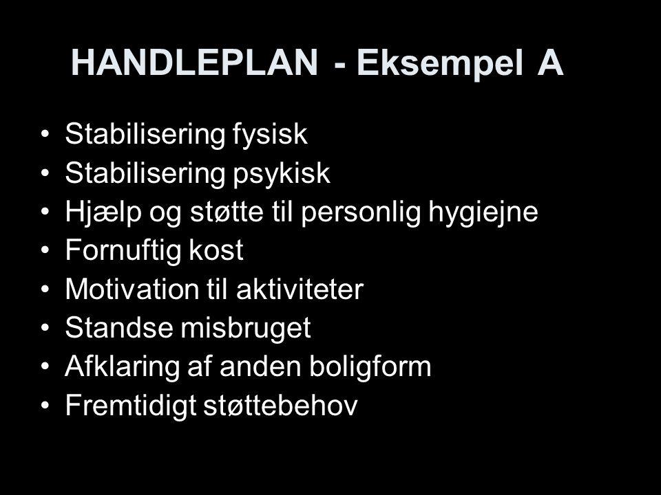 HANDLEPLAN - Eksempel A
