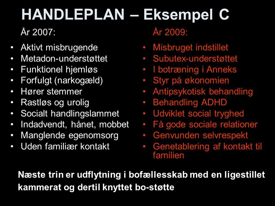 HANDLEPLAN – Eksempel C