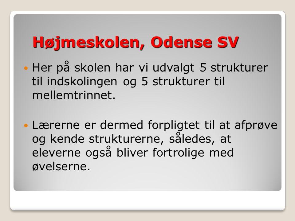 Højmeskolen, Odense SV Her på skolen har vi udvalgt 5 strukturer til indskolingen og 5 strukturer til mellemtrinnet.