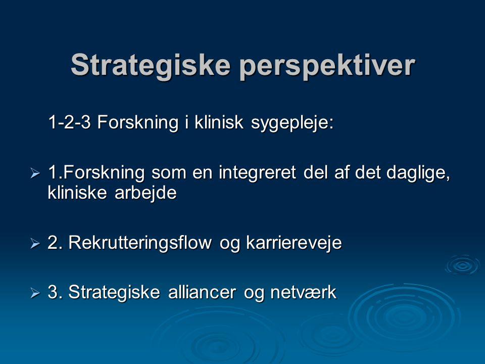 Strategiske perspektiver