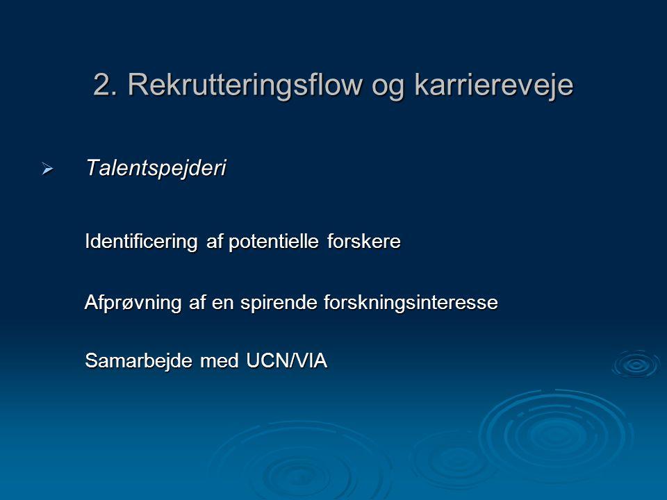 2. Rekrutteringsflow og karriereveje