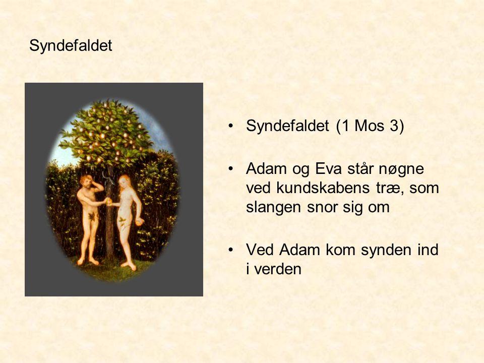 Syndefaldet Syndefaldet (1 Mos 3) Adam og Eva står nøgne ved kundskabens træ, som slangen snor sig om.