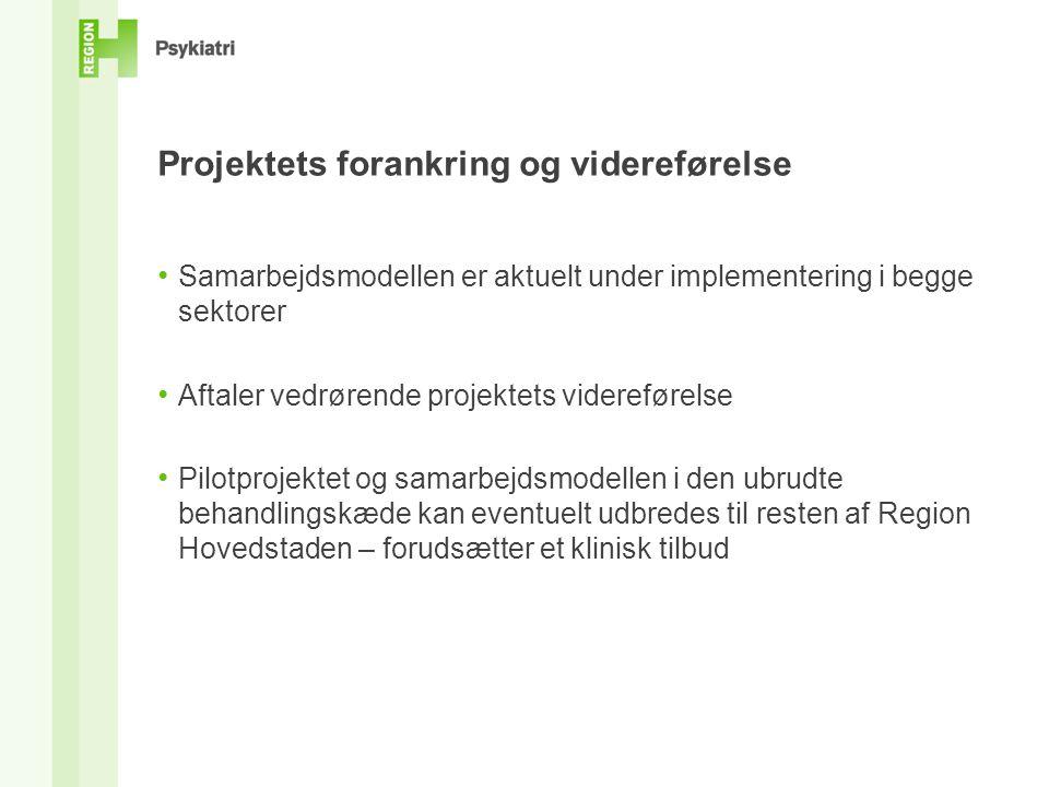Projektets forankring og videreførelse
