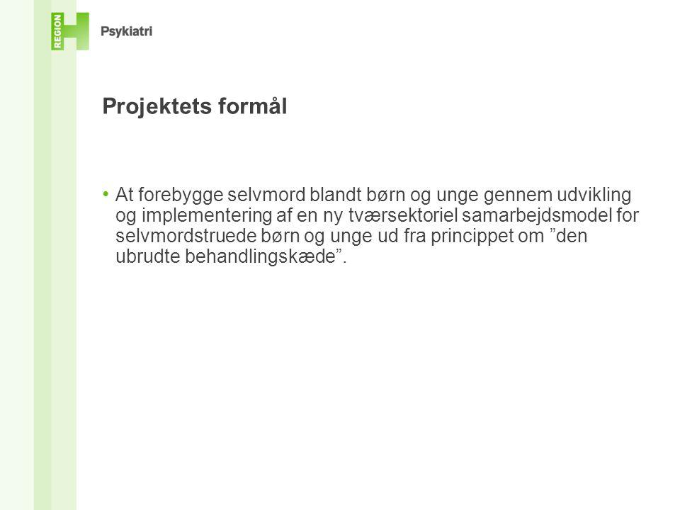 Projektets formål