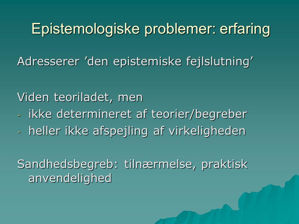 Epistemologiske problemer: erfaring