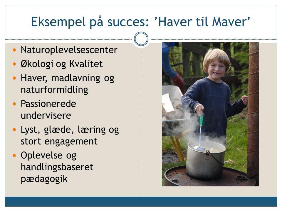 Eksempel på succes: 'Haver til Maver'