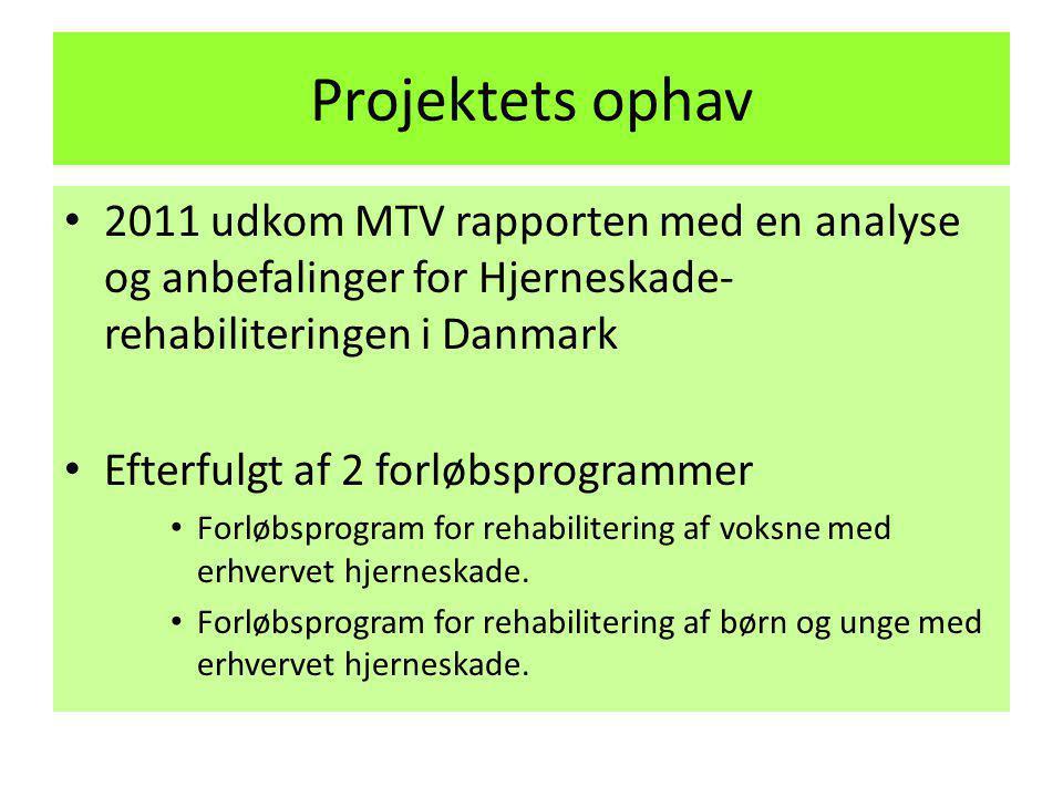 Projektets ophav 2011 udkom MTV rapporten med en analyse og anbefalinger for Hjerneskade-rehabiliteringen i Danmark.