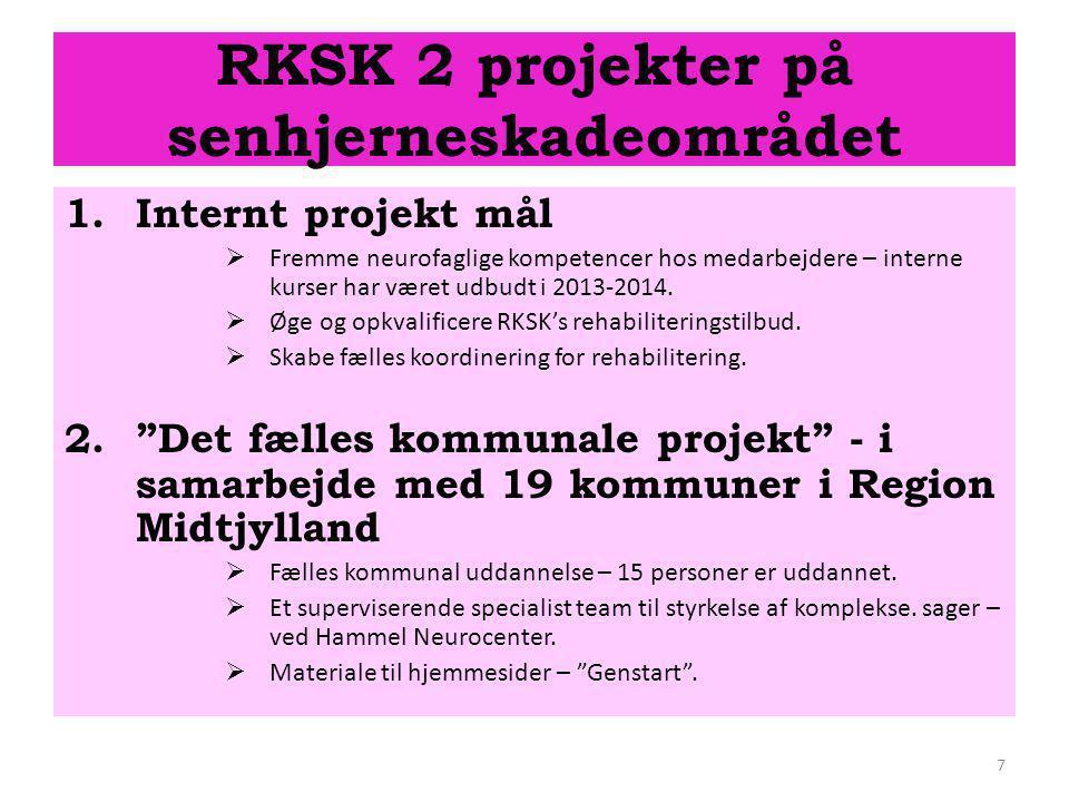 RKSK 2 projekter på senhjerneskadeområdet