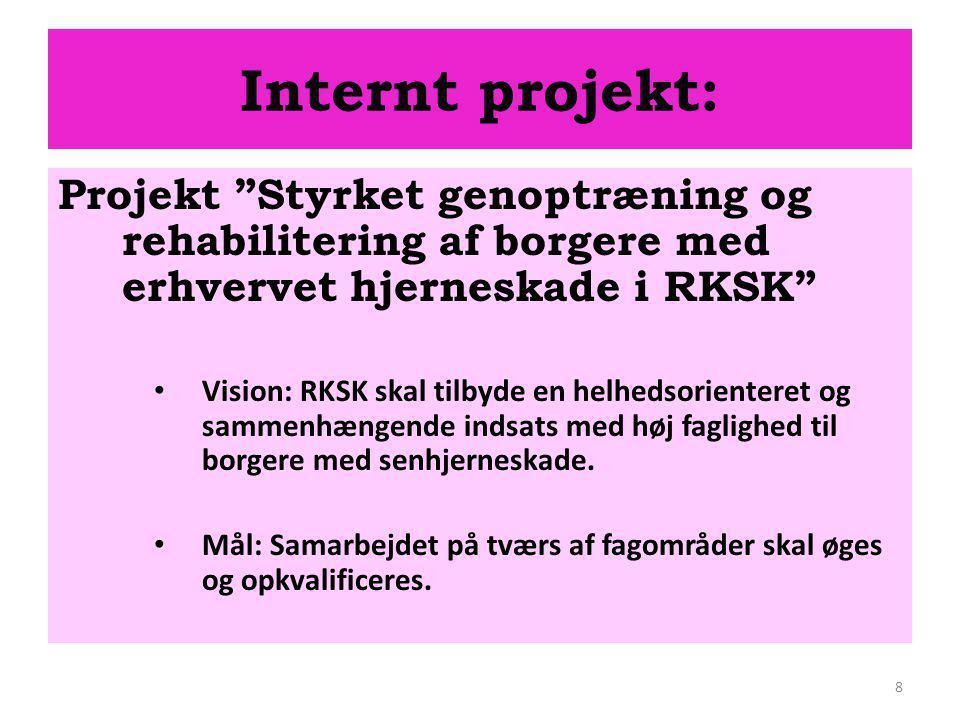 Internt projekt: Projekt Styrket genoptræning og rehabilitering af borgere med erhvervet hjerneskade i RKSK