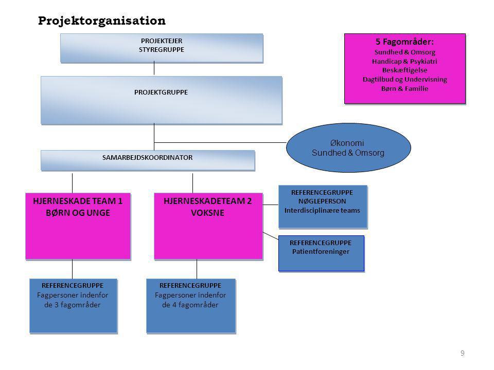 Projektorganisation 5 Fagområder: HJERNESKADE TEAM 1 BØRN OG UNGE