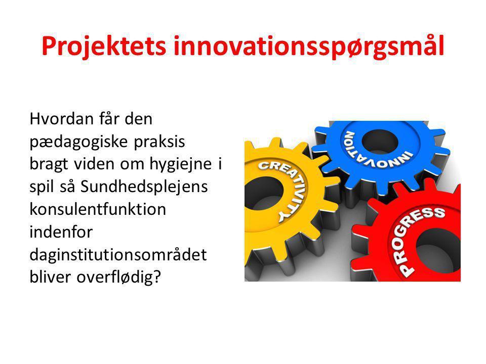 Projektets innovationsspørgsmål
