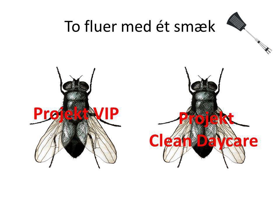 To fluer med ét smæk Projekt VIP Projekt Clean Daycare