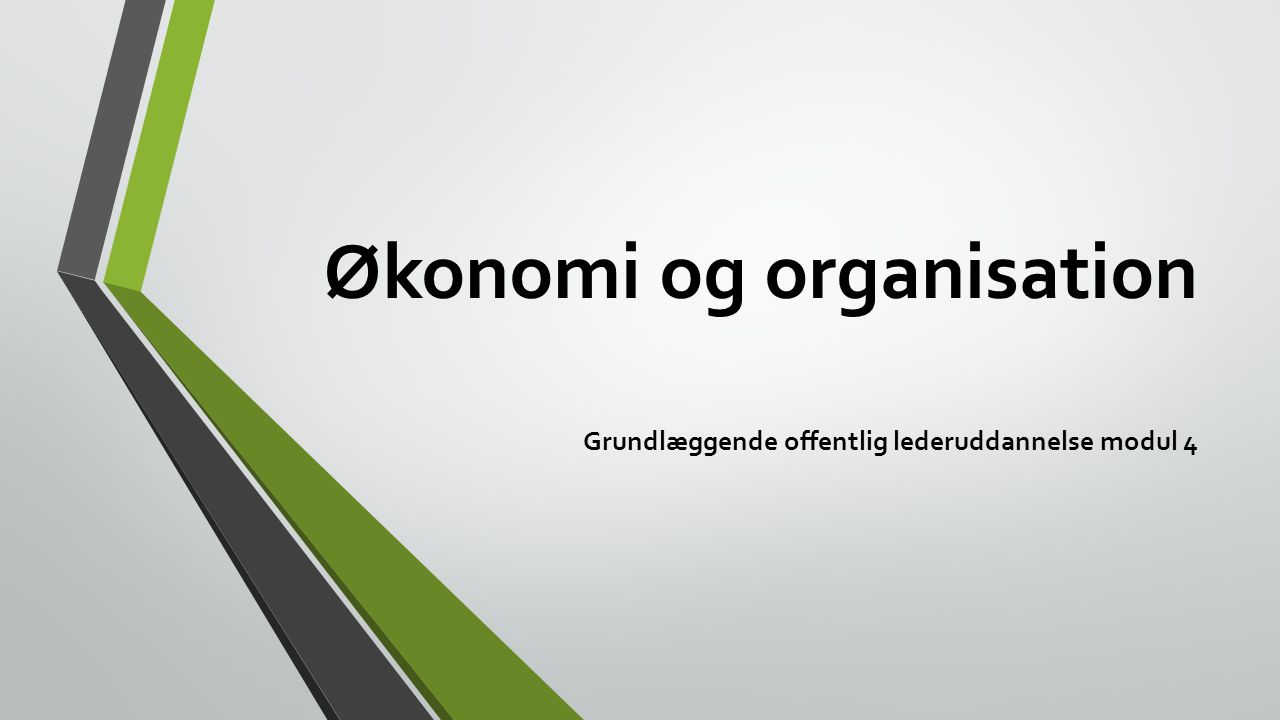 Økonomi og organisation