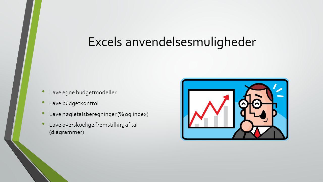 Excels anvendelsesmuligheder