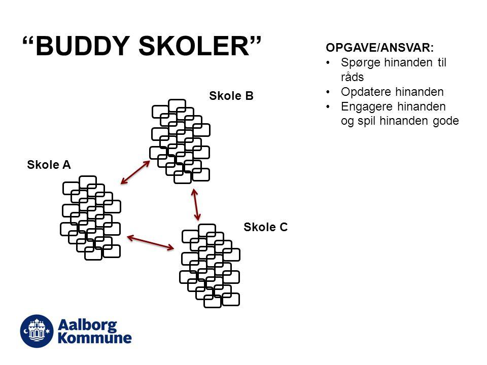 BUDDY SKOLER OPGAVE/ANSVAR: Spørge hinanden til råds