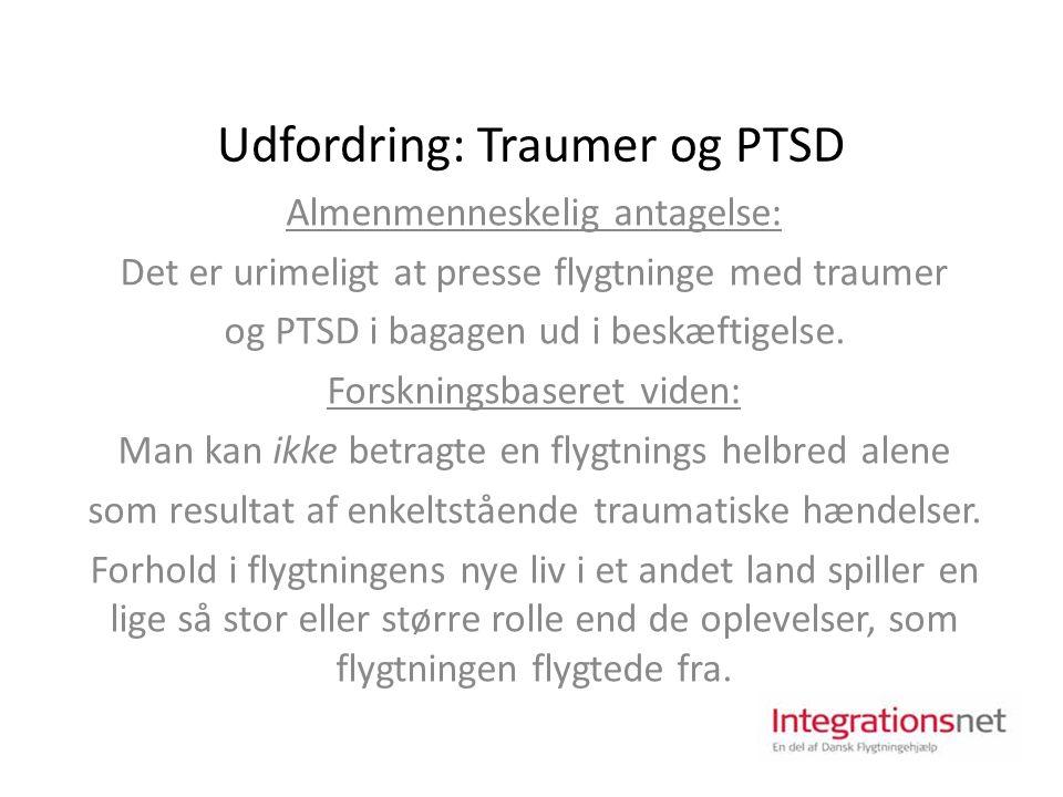 Udfordring: Traumer og PTSD