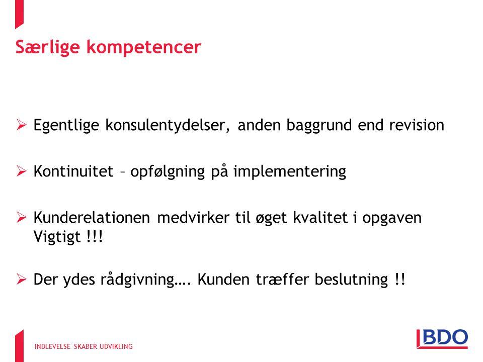 Særlige kompetencer Egentlige konsulentydelser, anden baggrund end revision. Kontinuitet – opfølgning på implementering.