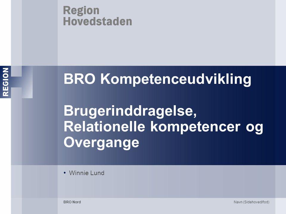 BRO Kompetenceudvikling Brugerinddragelse, Relationelle kompetencer og Overgange