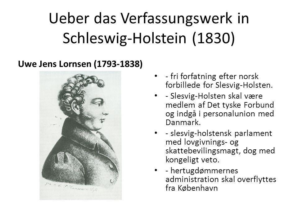 Ueber das Verfassungswerk in Schleswig-Holstein (1830)