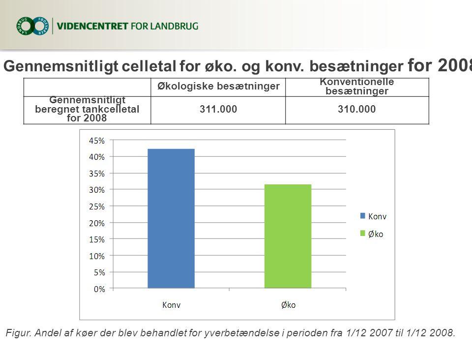 Gennemsnitligt celletal for øko. og konv. besætninger for 2008