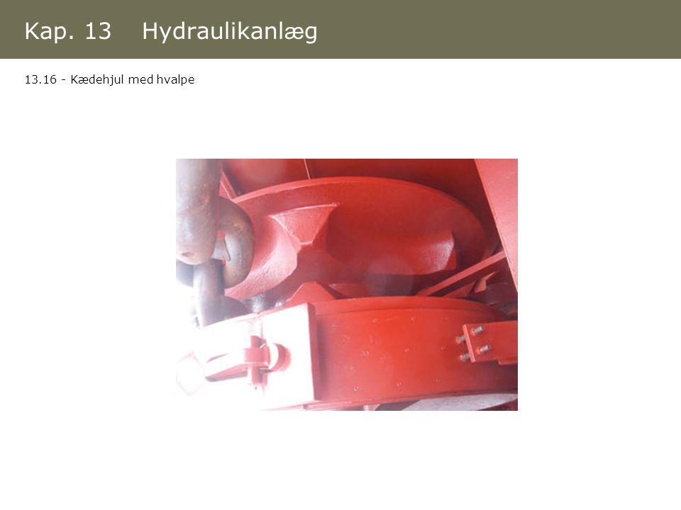 Kap. 13 Hydraulikanlæg 13.16 - Kædehjul med hvalpe