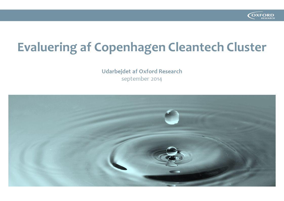 Evaluering af Copenhagen Cleantech Cluster