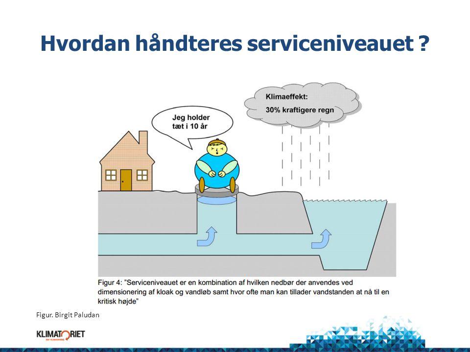 Hvordan håndteres serviceniveauet