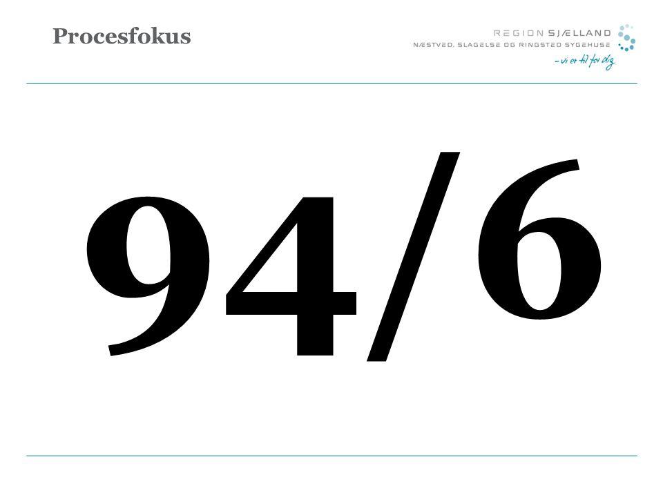 Procesfokus 94/6