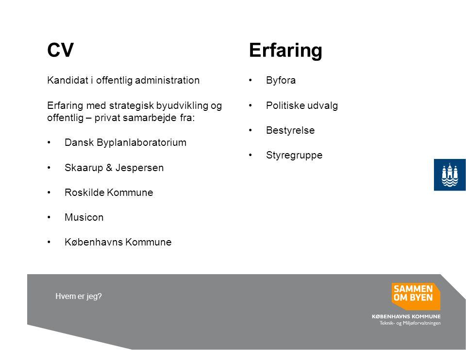 CV Erfaring Kandidat i offentlig administration