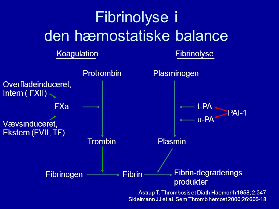 Fibrinolyse i den hæmostatiske balance