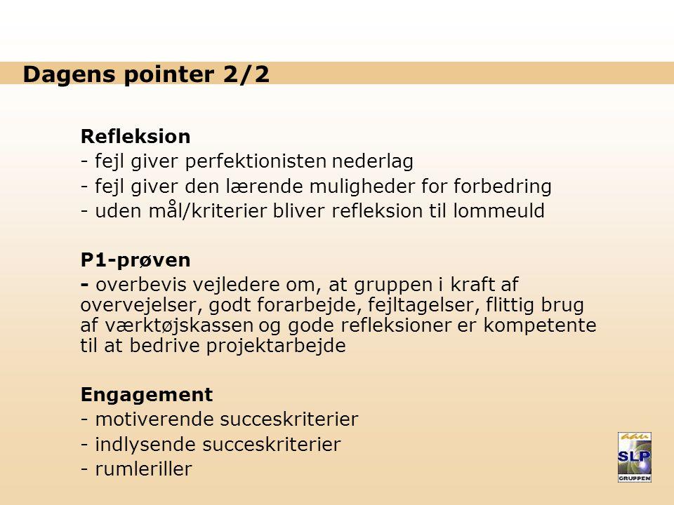 Dagens pointer 2/2 Refleksion fejl giver perfektionisten nederlag