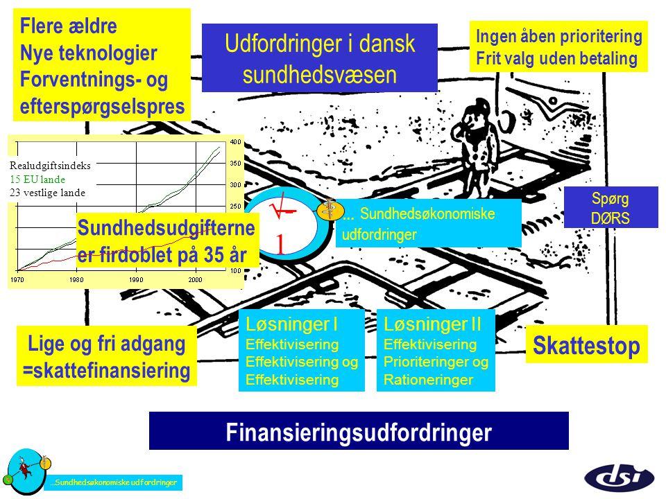 Finansieringsudfordringer