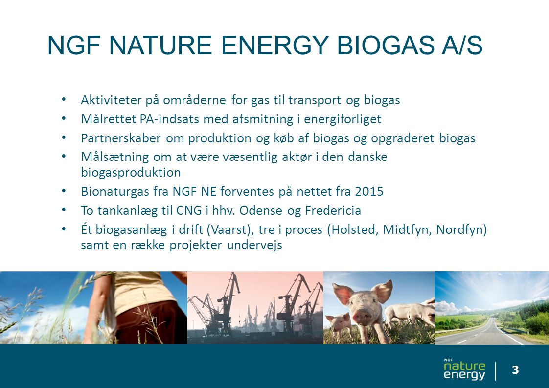 NGF NATURE ENERGY BIOGAS A/S