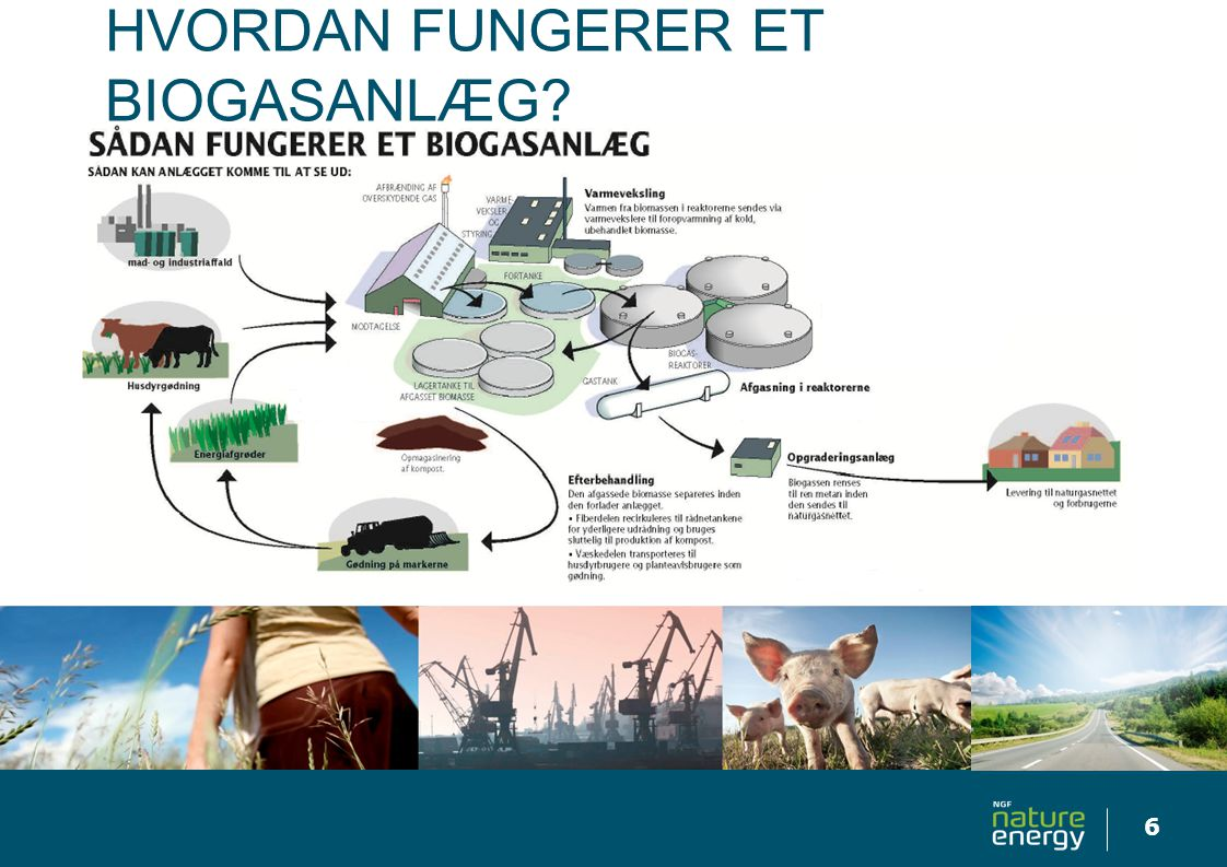 Hvordan fungerer et biogasanlæg