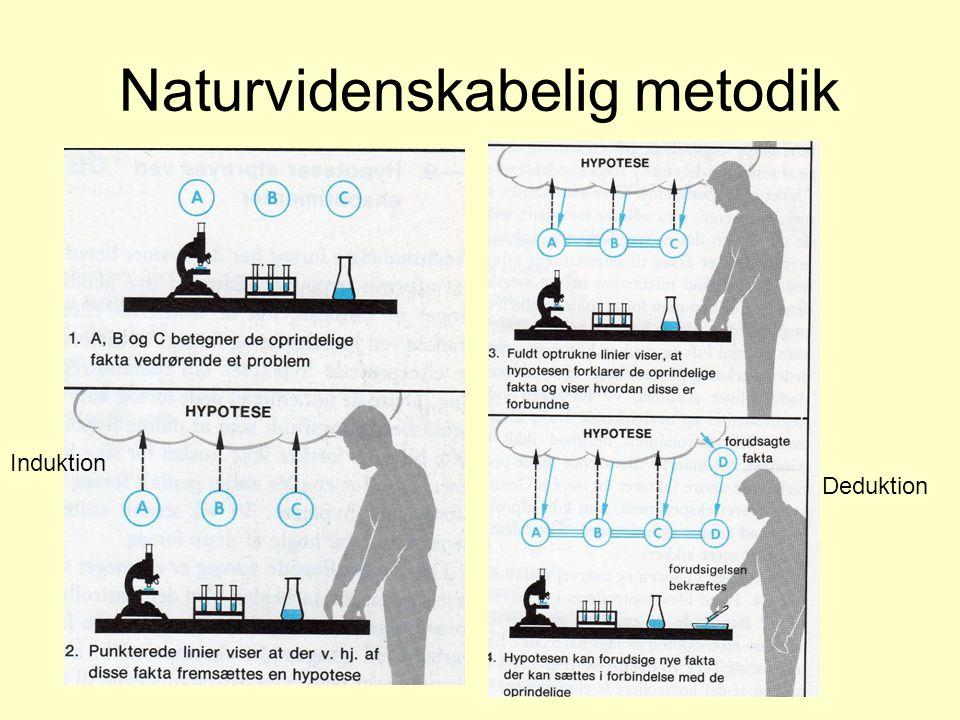 Naturvidenskabelig metodik